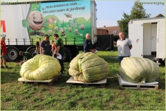 Pompoenfeest Wildert Weging-408-BorderMaker