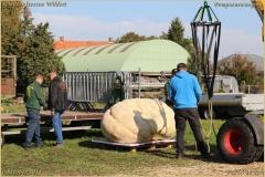 Pompoenfeest Wildert Weging-62-BorderMaker