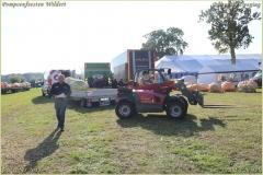 Pompoenfeest Wildert Weging-67-BorderMaker
