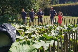 Rondrit pompoenen en BBQ 31-08-2019